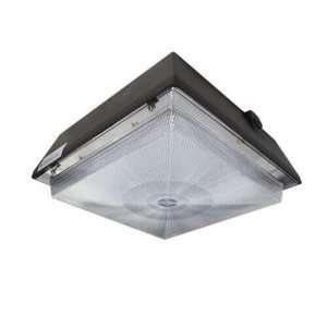 Garage light fixtures_ Ceiling Canopy Light_ LED CANOPY LIGHTS